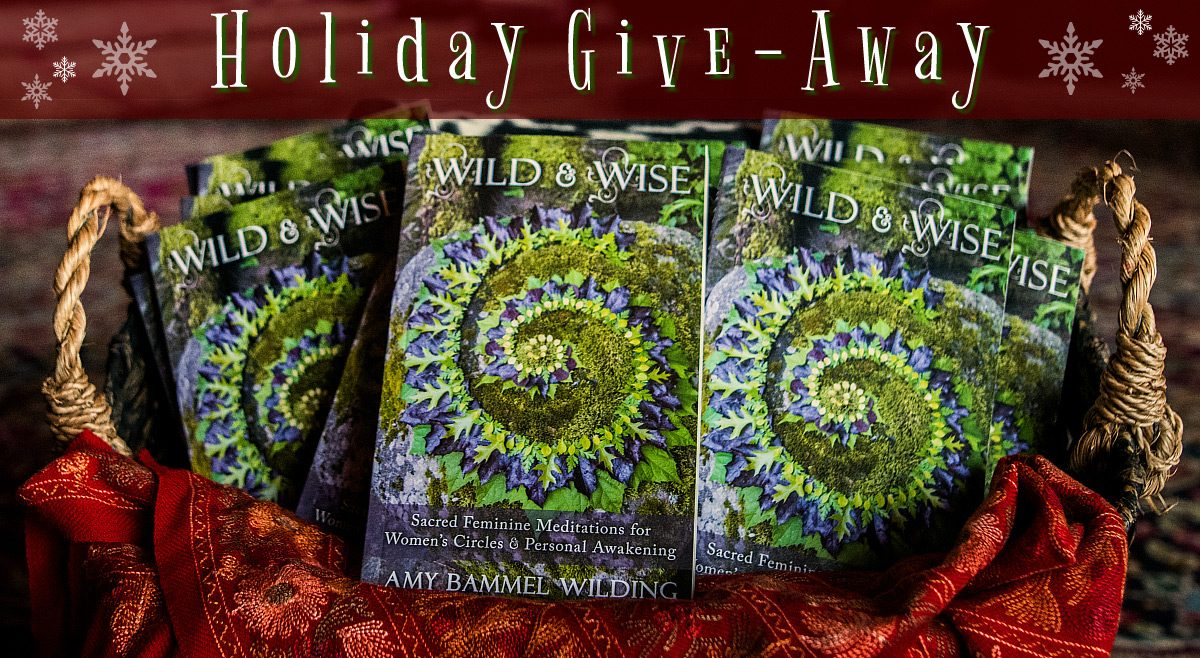 Wild & Wise Holiday Give-Away